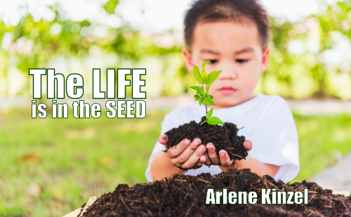 #2 – The Life is in the Seed
