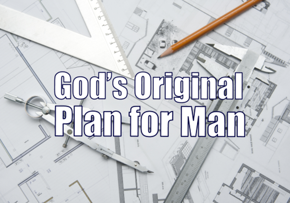 #2 – God's Original Plan for Man