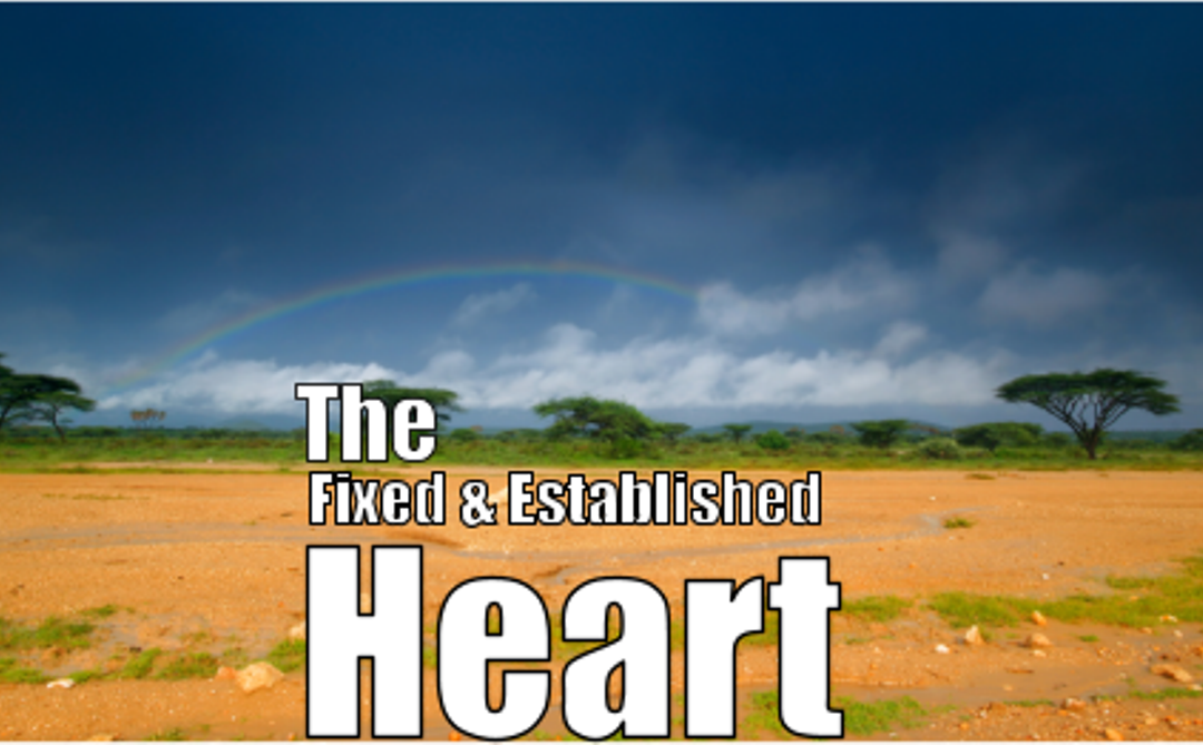 #6 -The Fixed and Established Heart